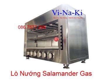 lò nướng salamander gas